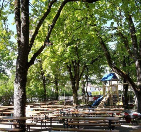 Baumpflege-Biergarten-1