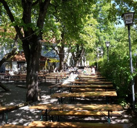 Baumpflege-Biergarten