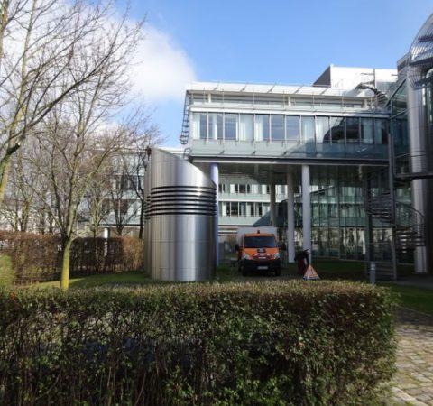 Baumpflege-Deutschen-Bundesbank-7