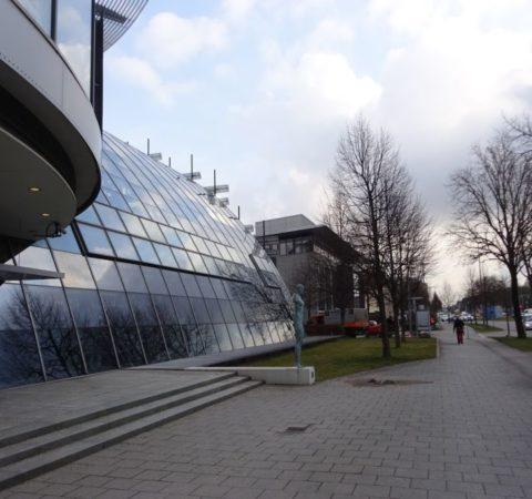 Baumpflege-Deutschen-Bundesbank-9