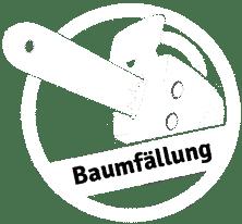 Baumfällung München und Nürnberg
